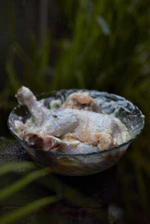 ChickenAngle